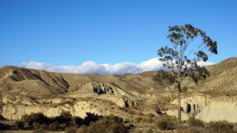hiking Tabernas desert landscape