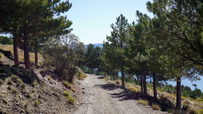 Sierra Nevada alpujarras